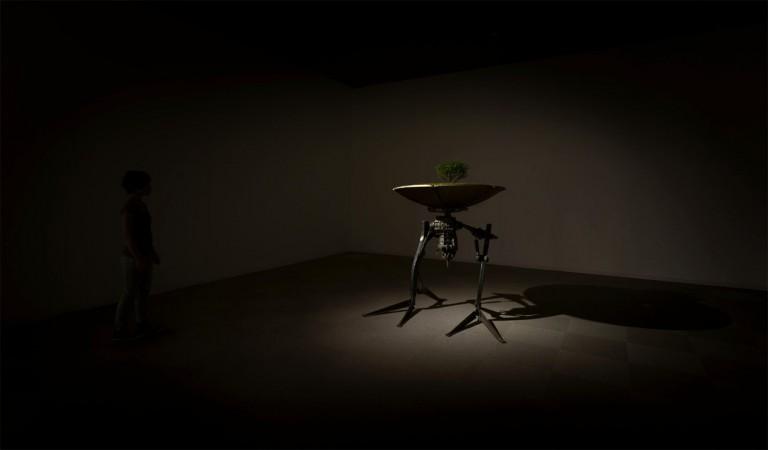 【NEWS】西宮市大谷記念美術館の<展覧会とコレクション>2 ひろがる美術館ヒストリー