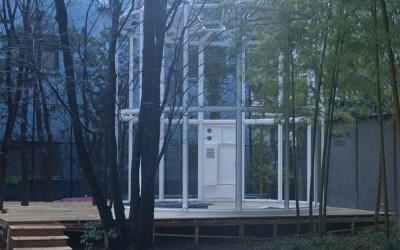 作品設営『國府理展 オマージュ 相対温室』<br>Typical Biosphere(3)